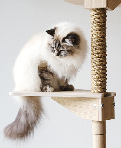 Design your Cat tree