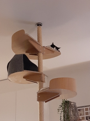Kissapuu_cat_tree_customize_your_climbing_tree_raeaetaeloei_kiipeilypuusi