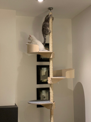 Kissapuu_design_cat_tree_floor_to_ceiling_lattiasta_kattoon