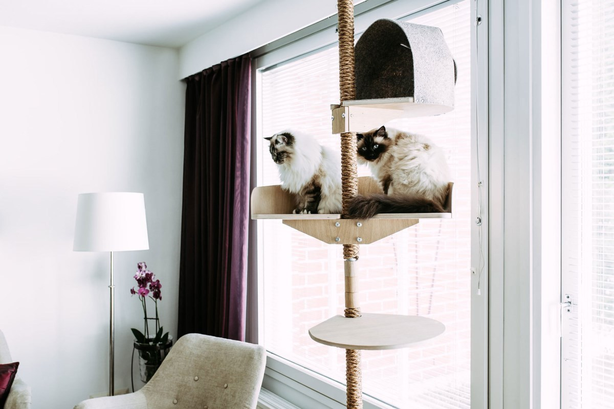 kissapuu cat tree design from finland